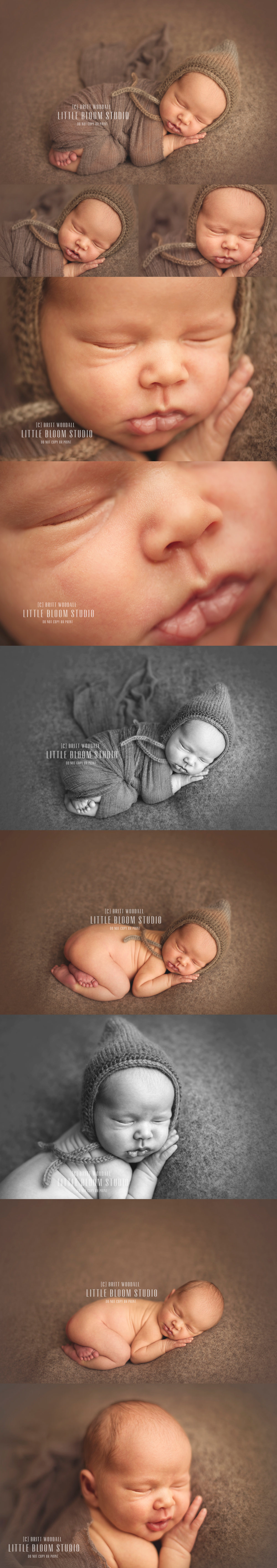 Asheville Charlotte Newborn Baby Photographer Photography