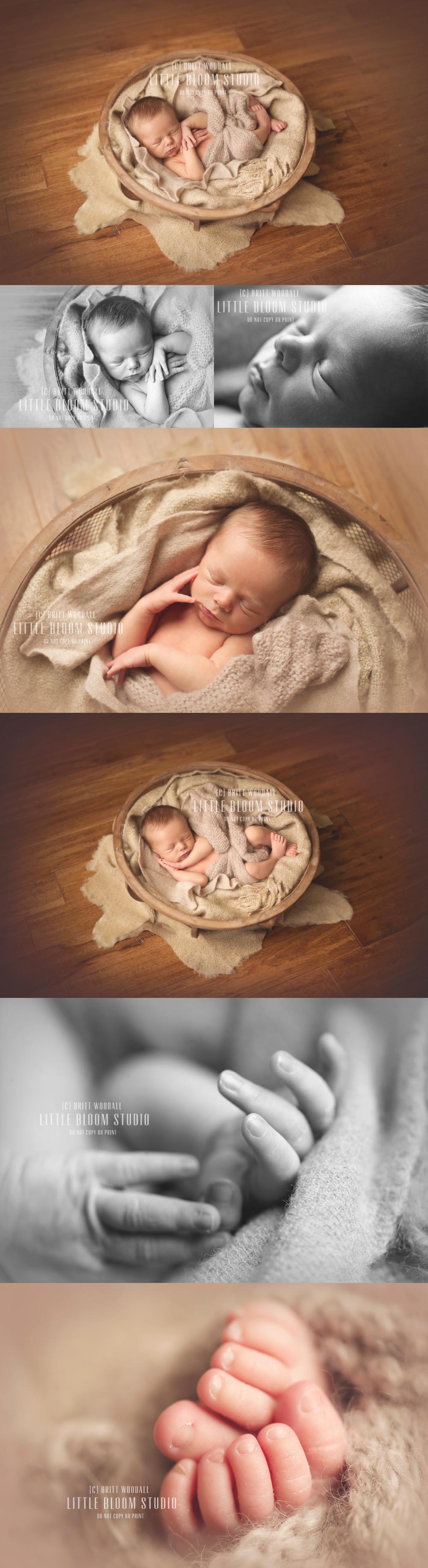 Asheville newborn phtography