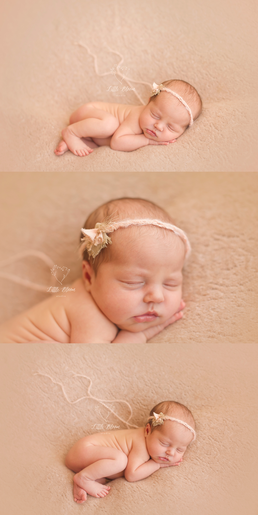 Greenville_baby_photographer.jpg
