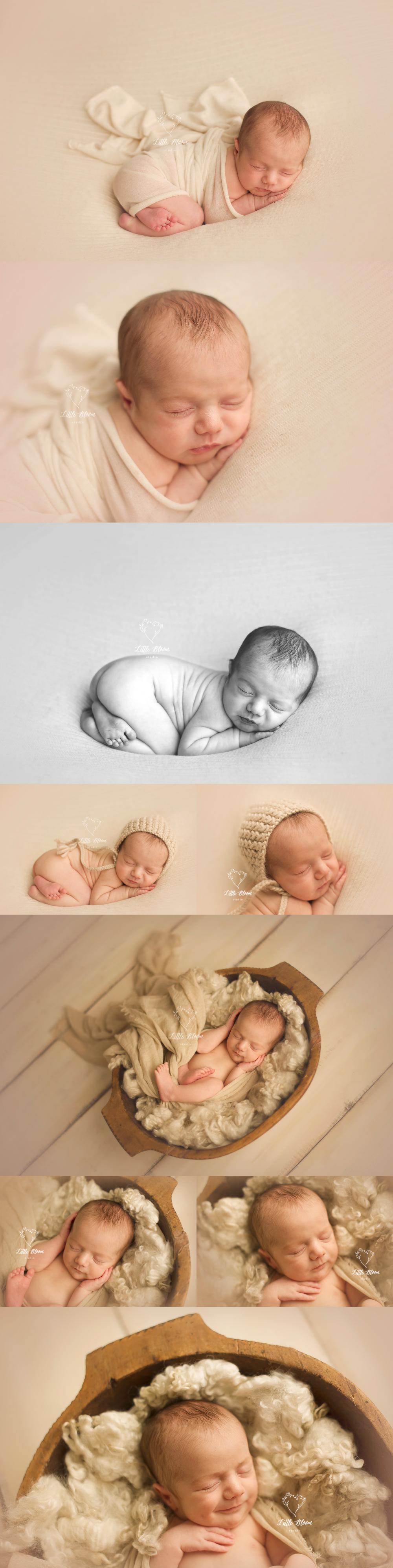 Asheville_newborn_photographer.jpg