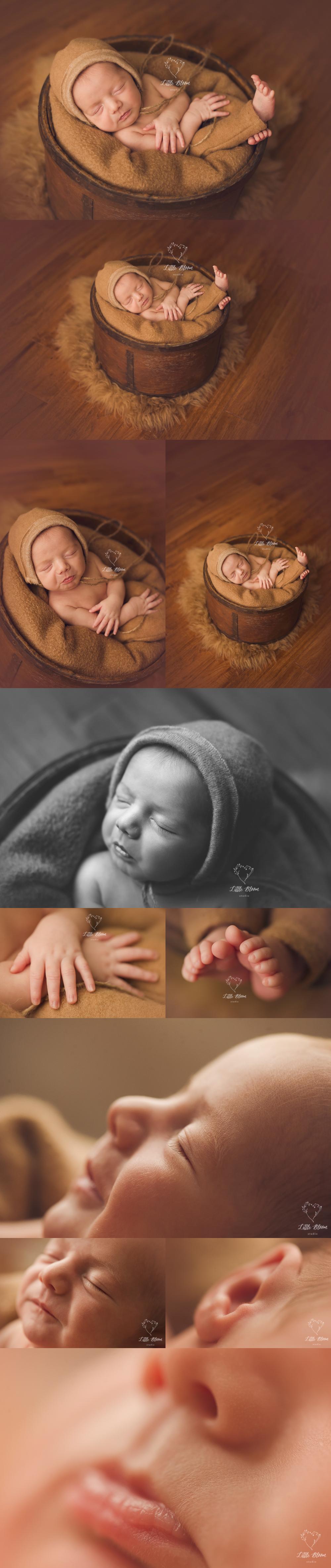 Asheville_baby_photographer.jpg