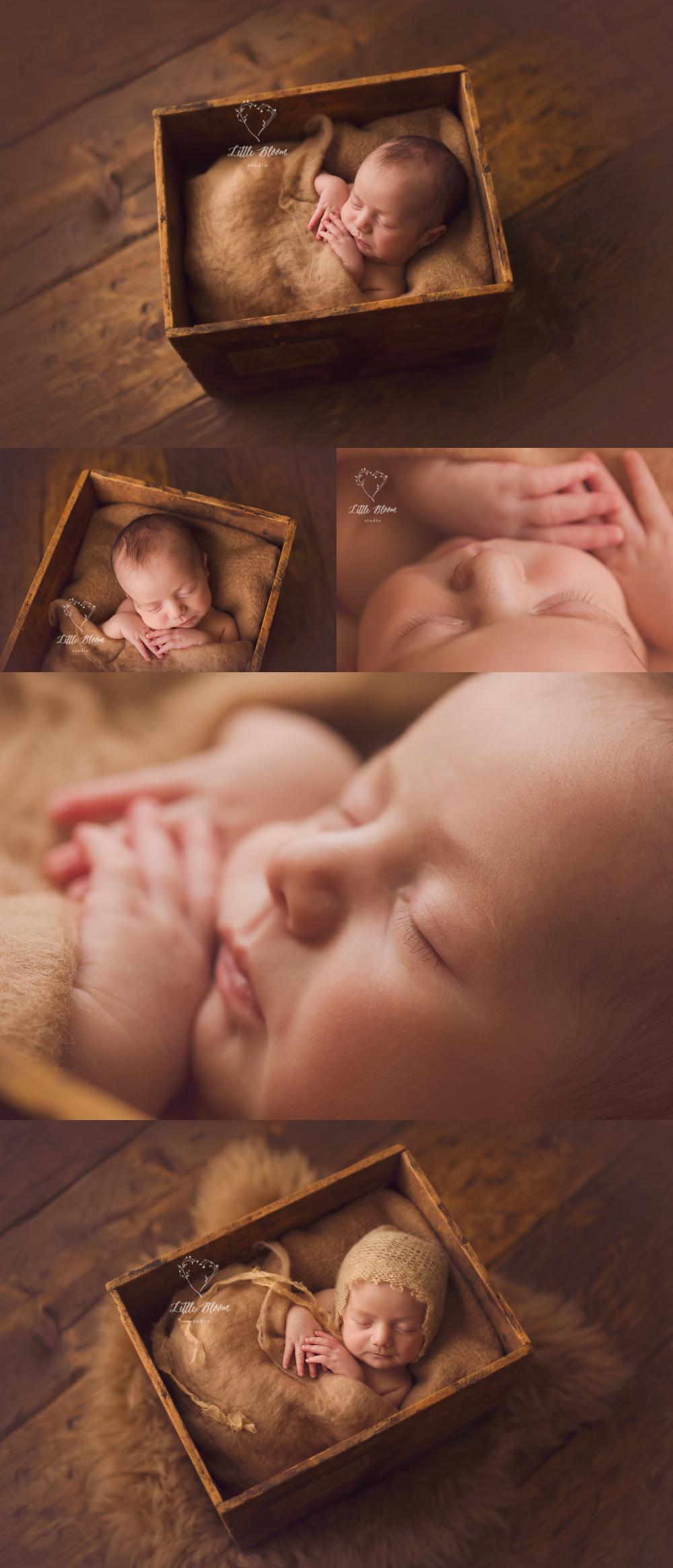 Spartanburg_newborn_photographer.jpg