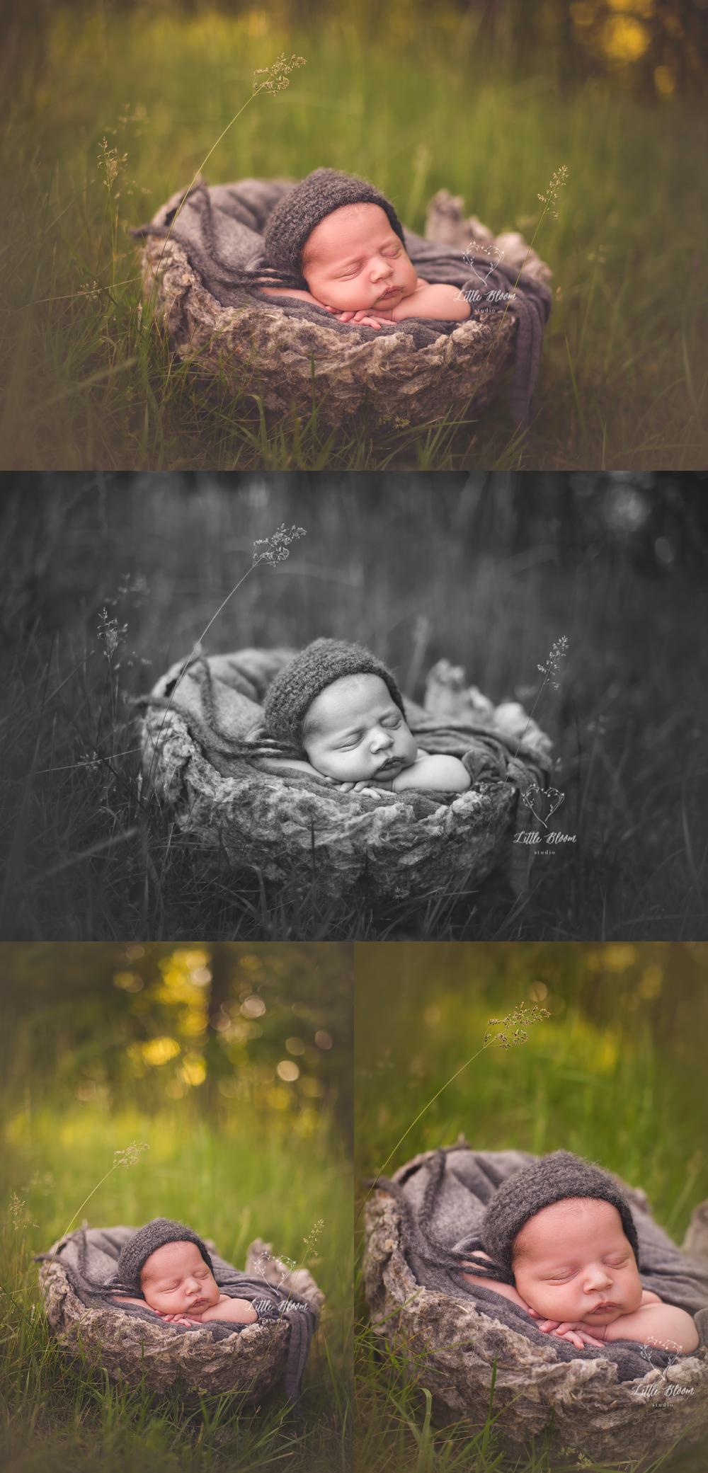 outdoor_newborn_photography.jpg