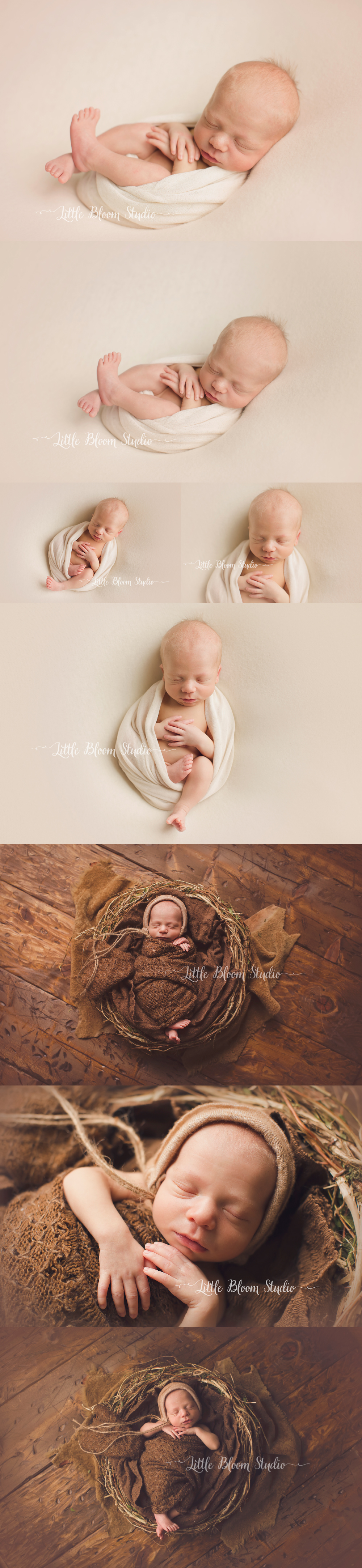 Spartanburg_newborn_photographer.jpg