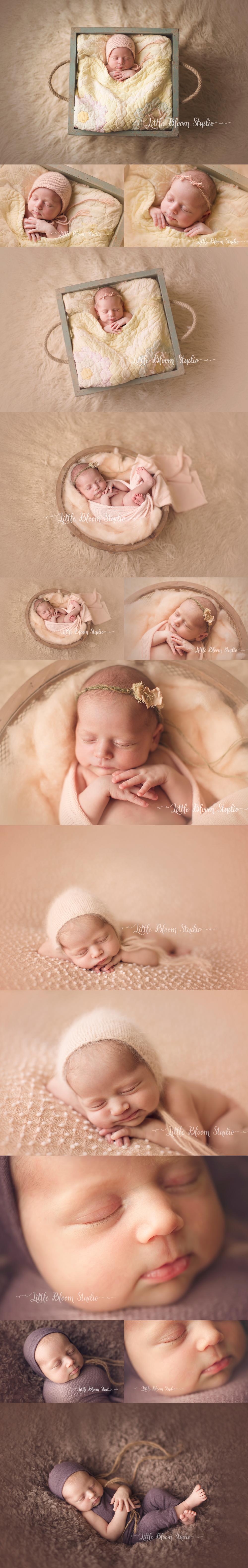 greenville_newborn_photography.jpg