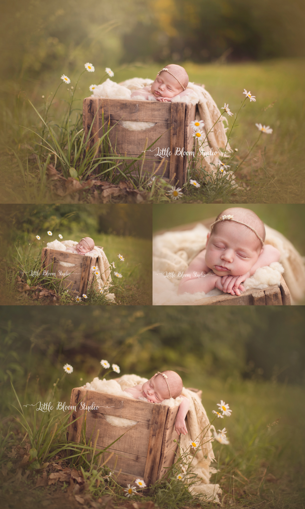 spartanburg_newborn_photography.jpg