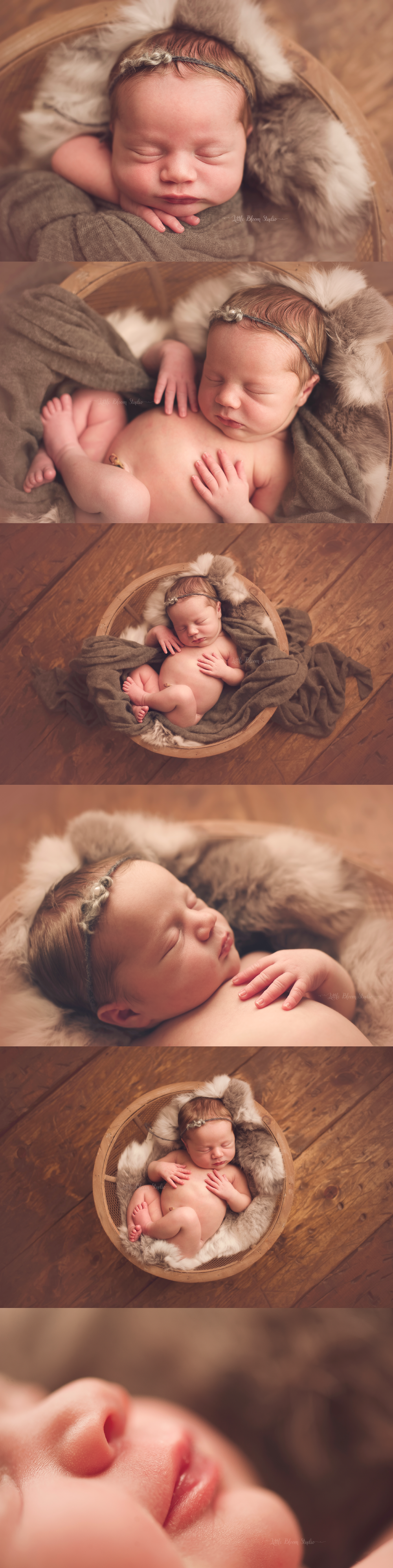 greenville baby photography.jpg
