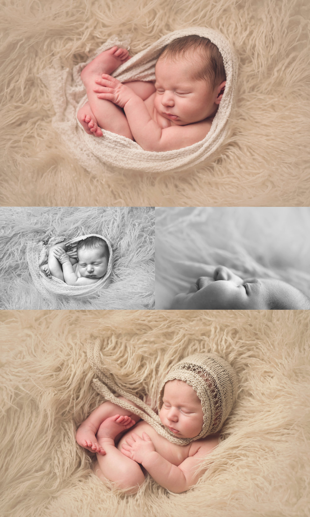 asheville_baby_photographer