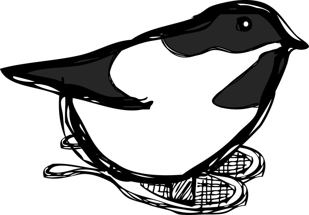 Chickadee-SnowShoes.jpg