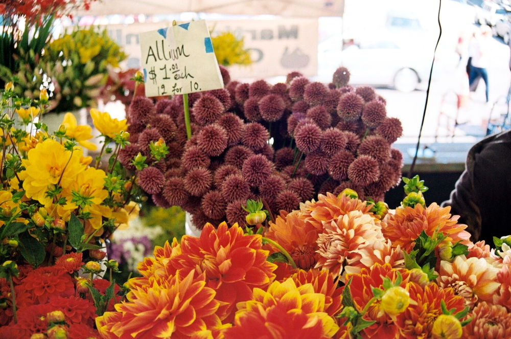 Flowers, Pike Place Market, Seattle, WA, 2012