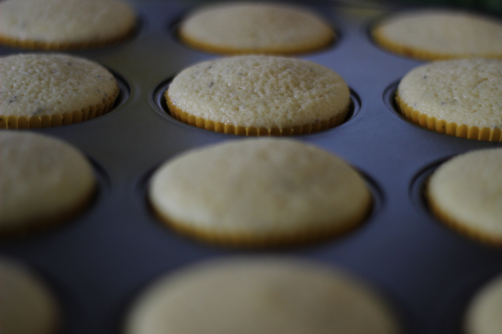 lemon poppyseed cupcakes | half galley kitchen