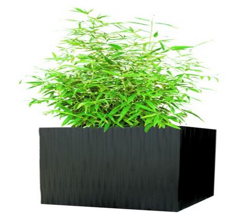 Kenji square planter