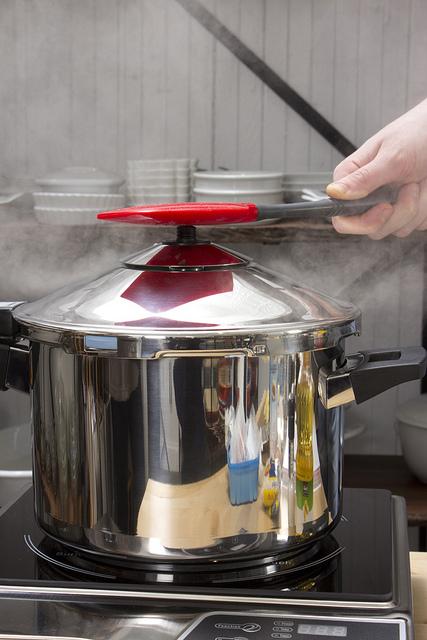 Pressure Cooker Fun