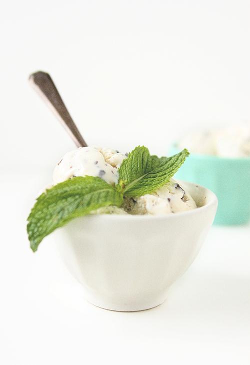 Mint Frozen Yogurt with Dark Chocolate