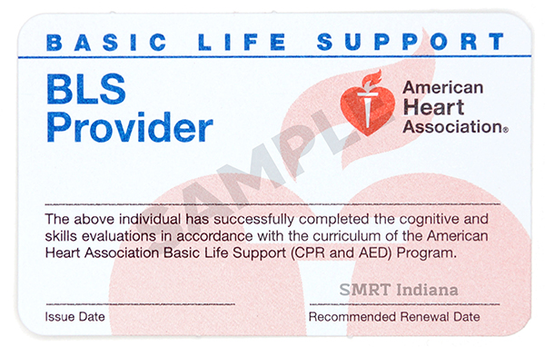 Basic Life Support   (Healthcare Provider CPR)  -  $60/student