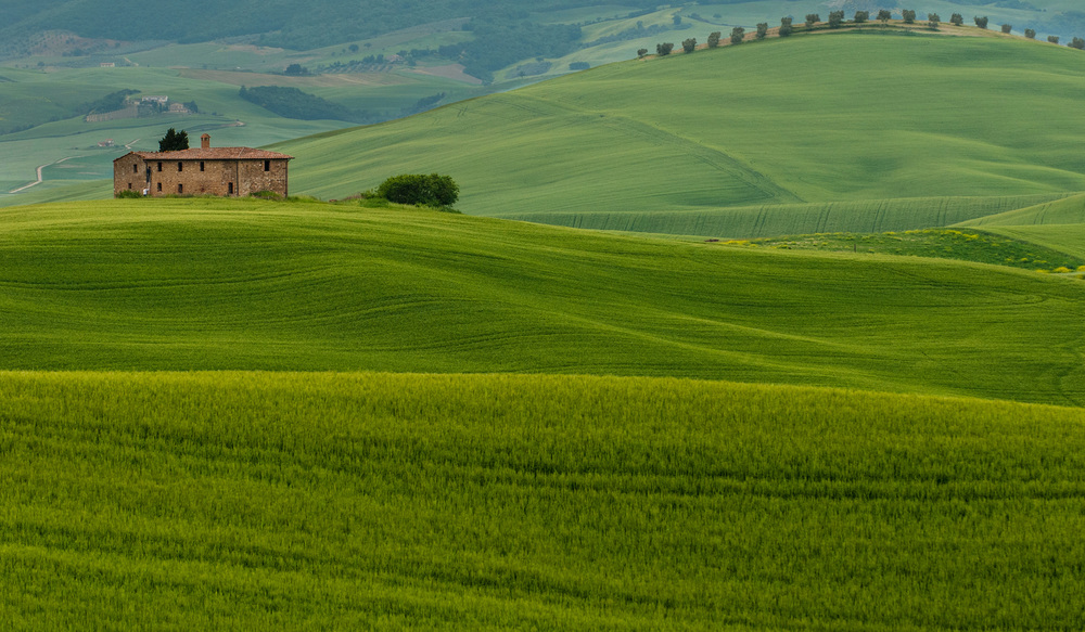 Tuscan Farmhouse Green Fields.jpg