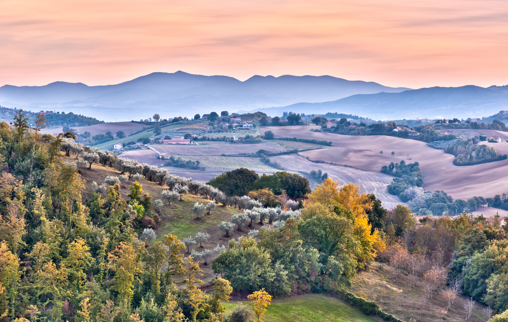 Umbrian Countryside.jpg