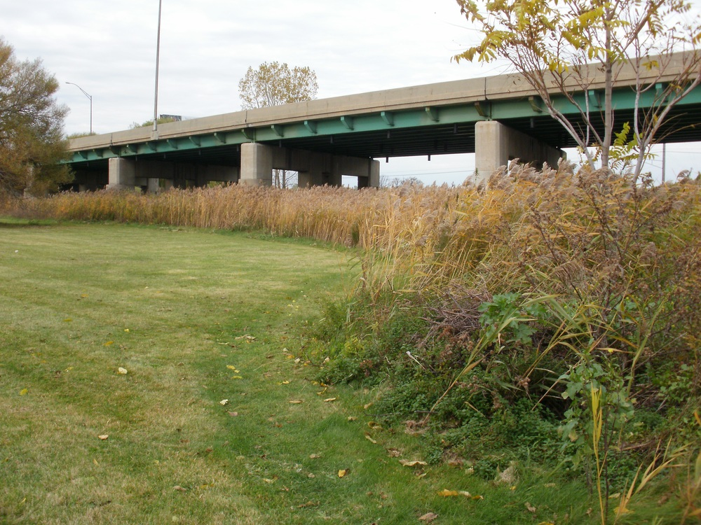 wetland-port-huron.jpg