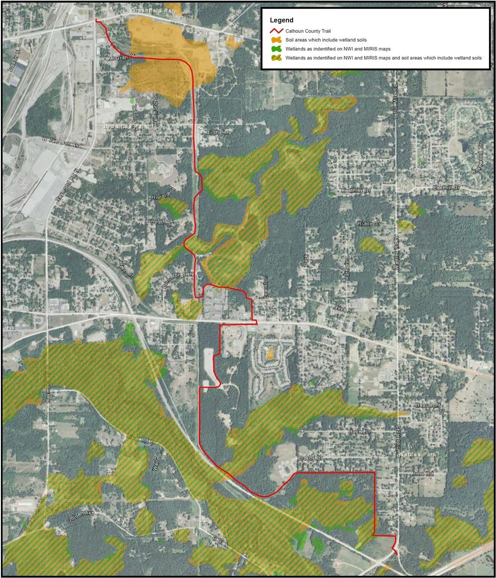 calhoun-county-wetland.jpg