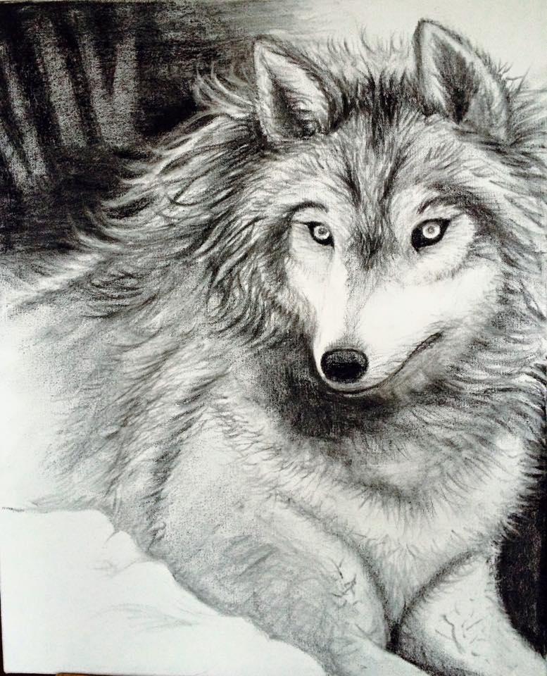 Sara's Wolf.jpg