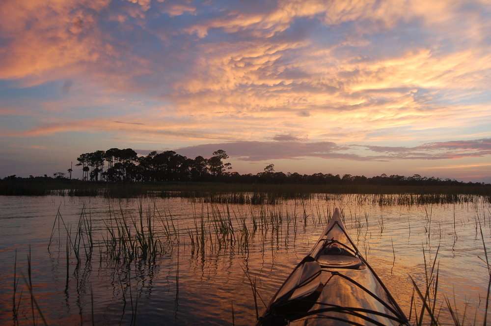 Sunset Tour at Skidaway.JPG