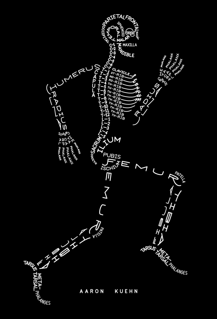 curiositycounts :      Skeleton Typogram  by Aaron Kuehn     yes.us.