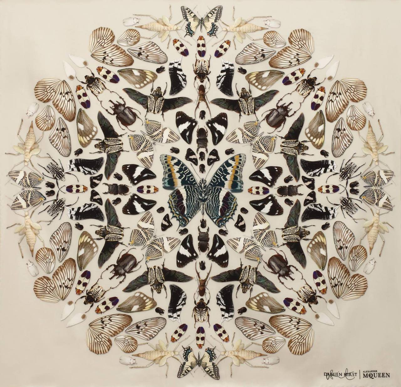 deliciousdimension :      Damien Hirst + Alexander McQueen Scarf Collection      via  Synaptic Stimuli