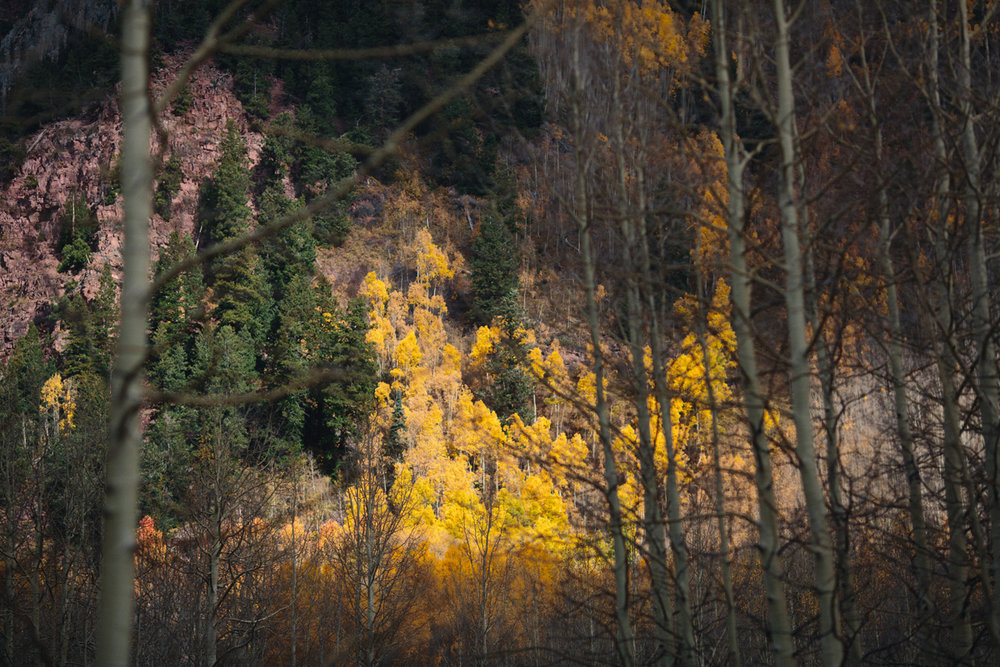 015-elopement-photography--maroon-bells--aspen--colorado--mountain-wedding.jpg