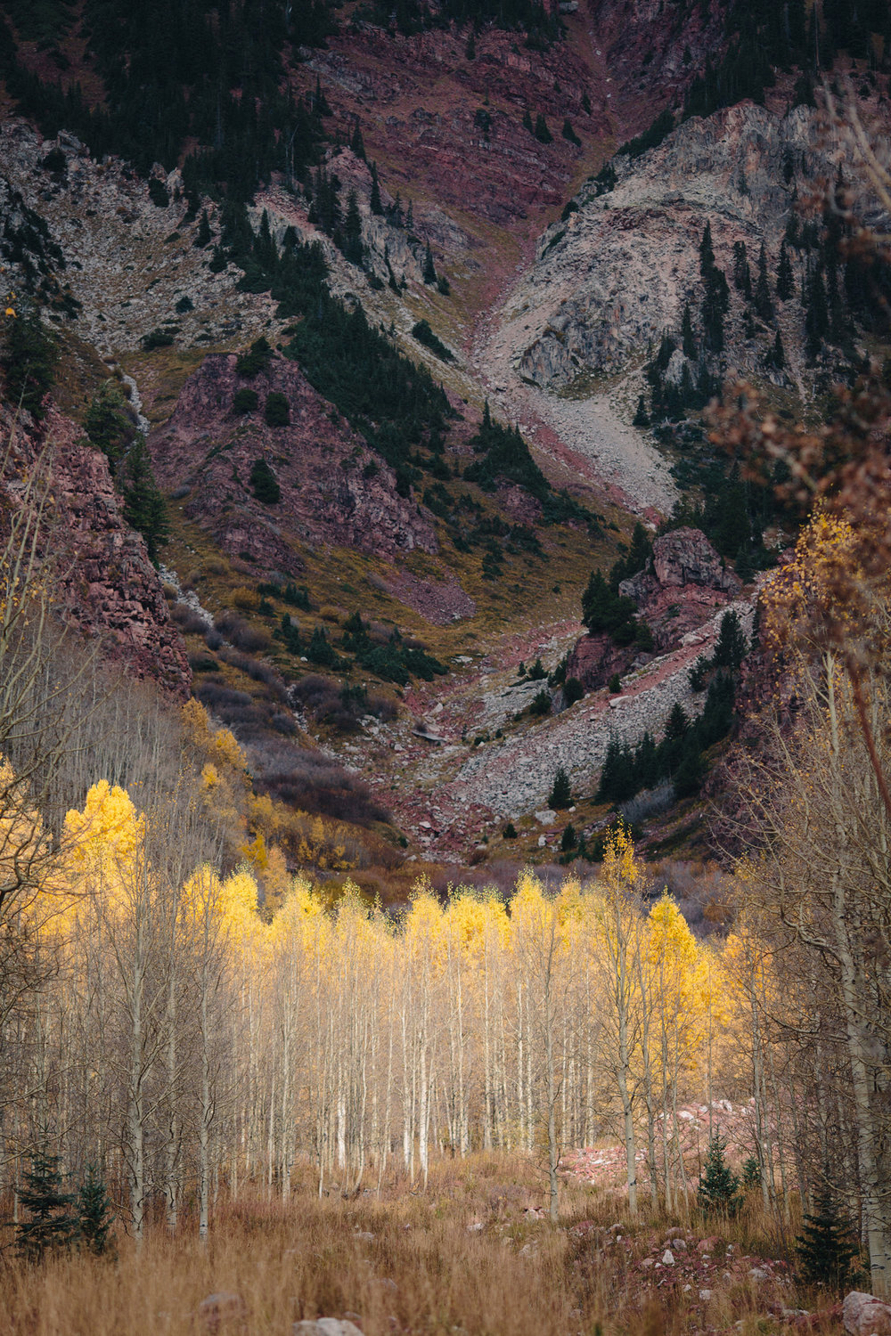 035-elopement-photography--maroon-bells--aspen--colorado--mountain-wedding.jpg