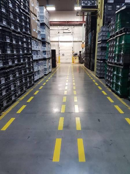 safety walkway 1.jpeg