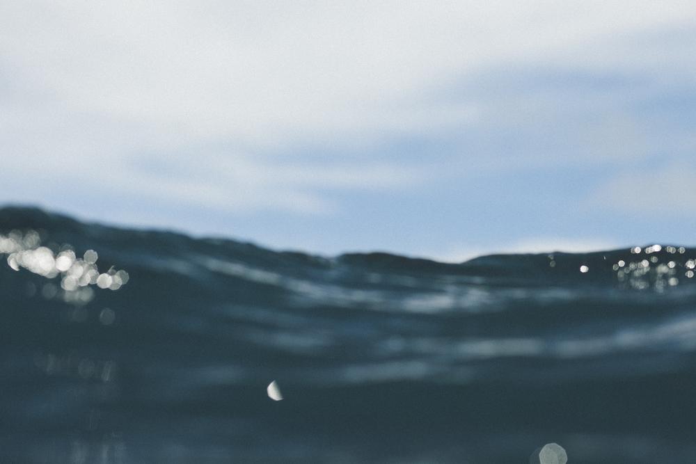 TheSeaLife-JoyOfSurfing-6440.jpg