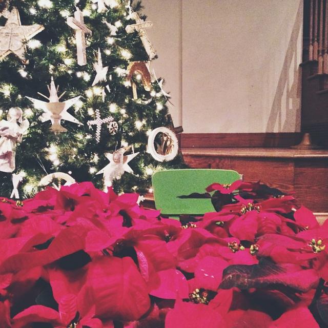 Frank the Chair: December Recap
