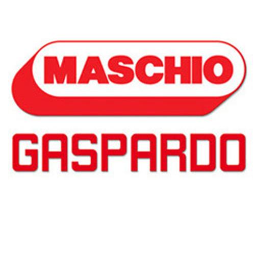 Maschio.jpg