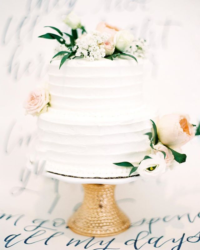 Such a gorgeous cake from Lyndsay and Hunter's wedding.  #indiefilmlab #contax645 #smp