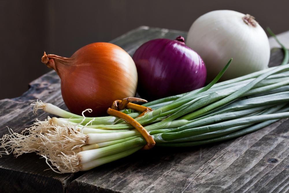 onions-1574x1050.jpg