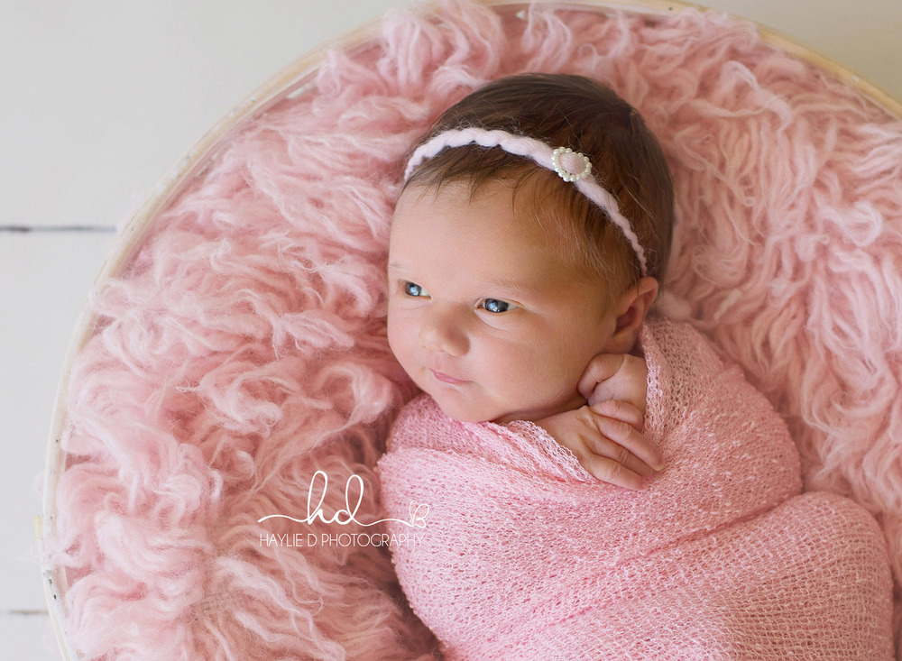 haylie D gold coast baby photographer