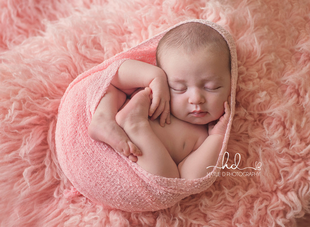 gold coast newborn baby photographer haylie D