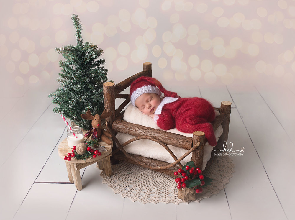 Elf on the shelf gold coast baby photographer haylie D photography