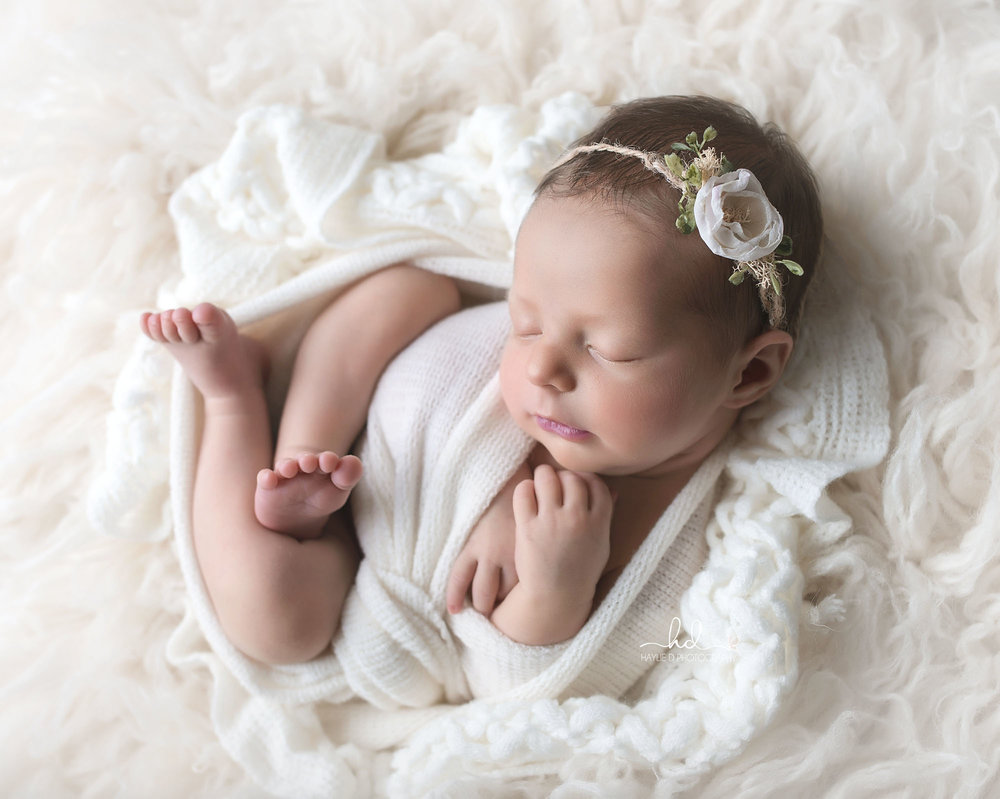 gold coast baby photographer haylie D photography