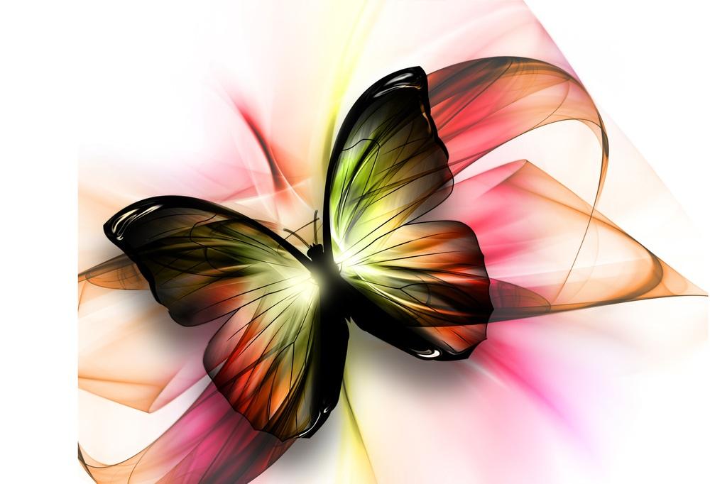 butterflyv1.jpg