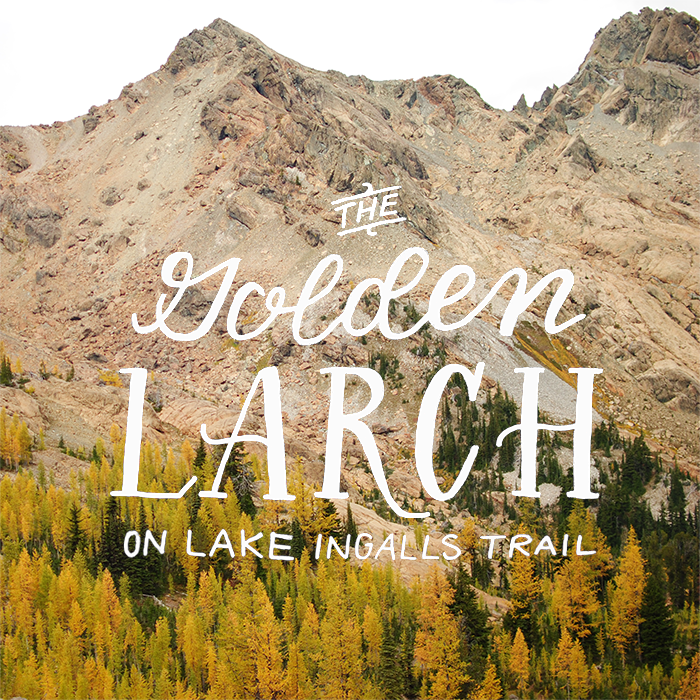 golden-larches-header1.png