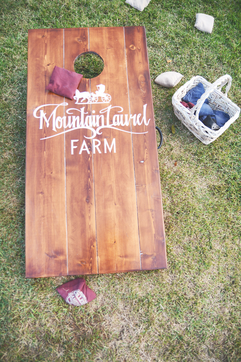 Cleveland Mountain Laurel Farm - Atlanta Wedding Photography - Gabby + Brice - Six Hearts Photography_0721-X3.jpg