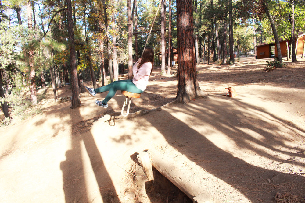prescott pines