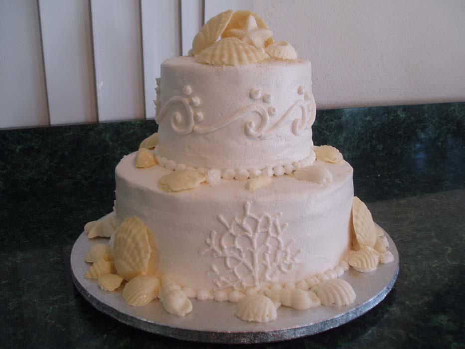 shell-cakes9.jpg