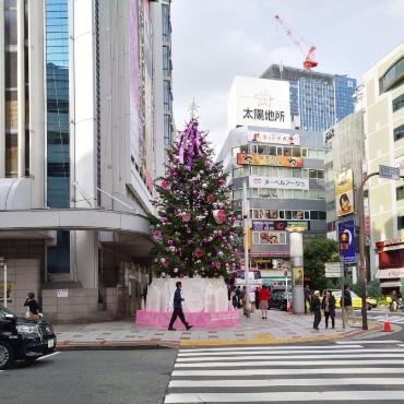 渋谷�撮��写真�
