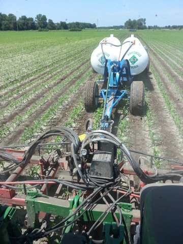 Side-dressing NH3 in June 2013