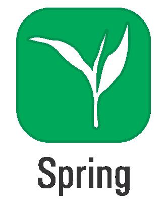 Spring (Web).png