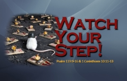 Watch Your Step title.jpg
