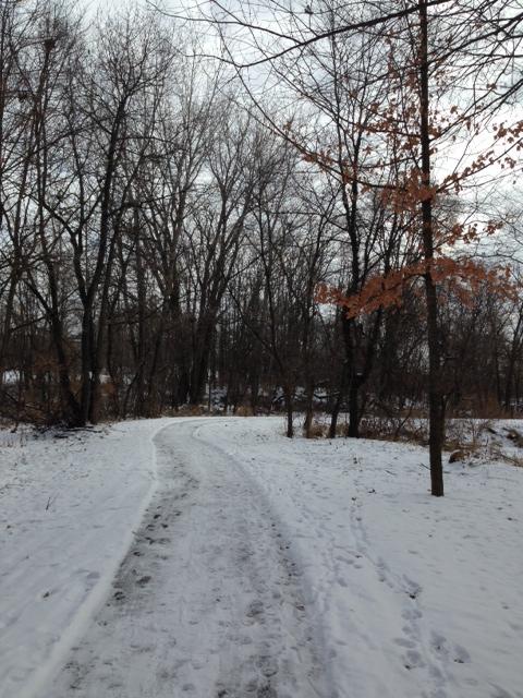 Trail Scene
