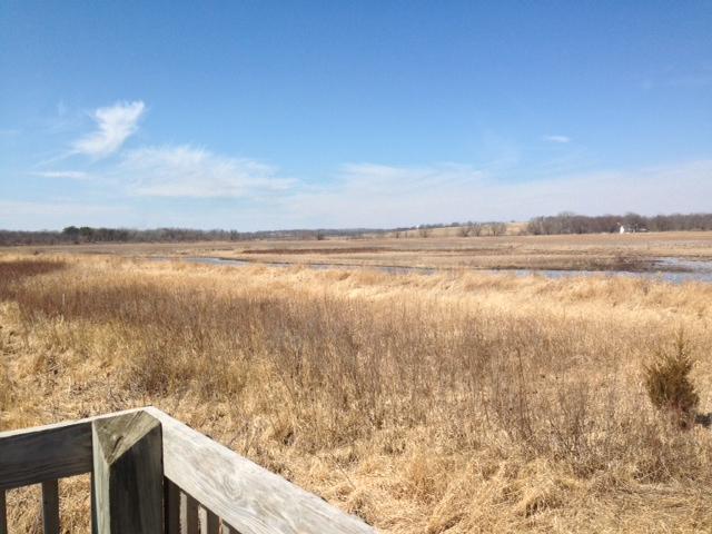 Former Prairie.jpg